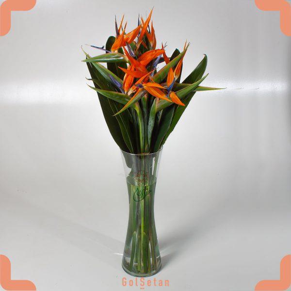 دسته گل استرلیتزیا یا پرنده بهشت
